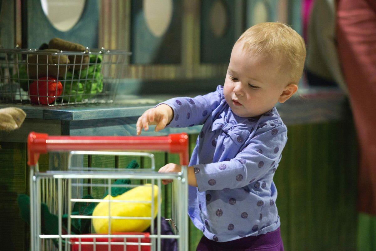 Grow it Gallery garden market Children's Museum of Southern Minnesota Mankato