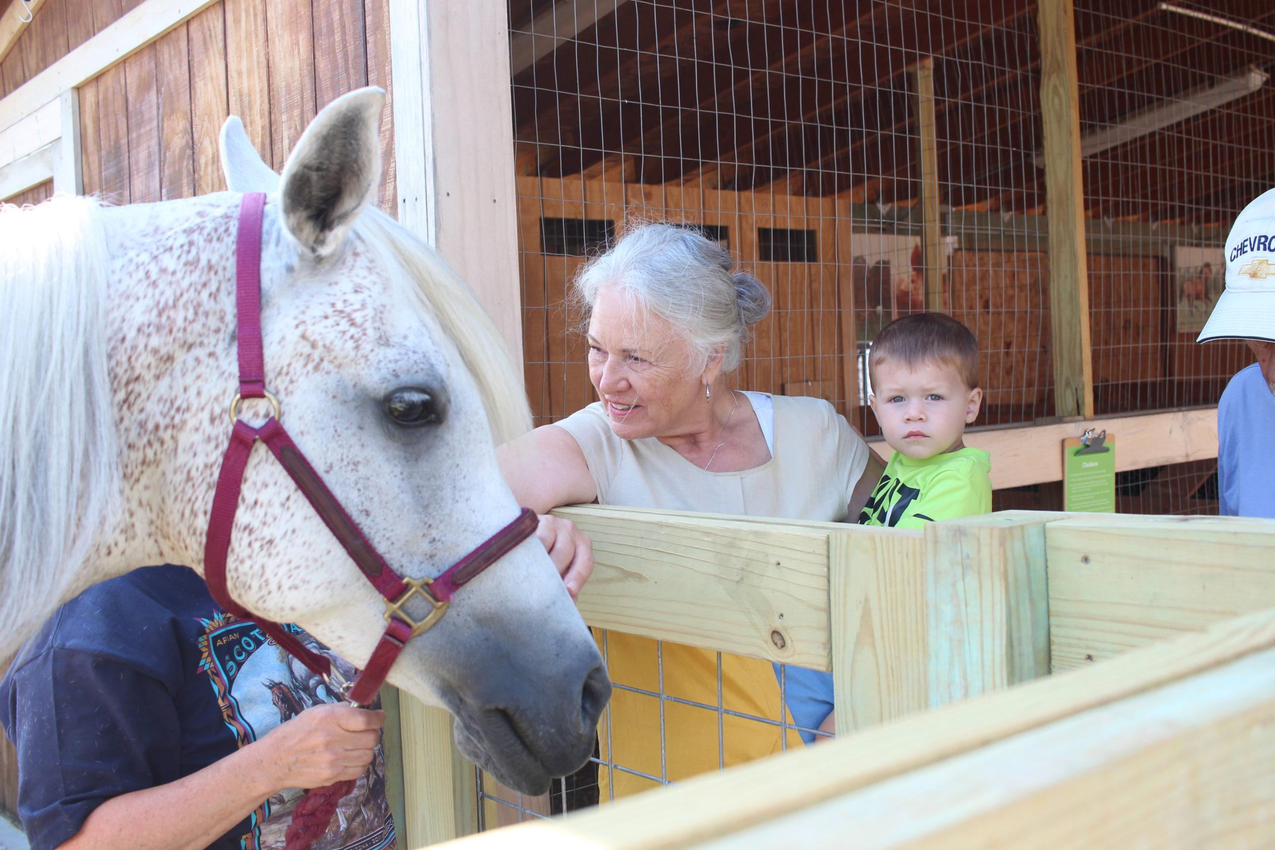 Alltech Farmyard Animal Experience