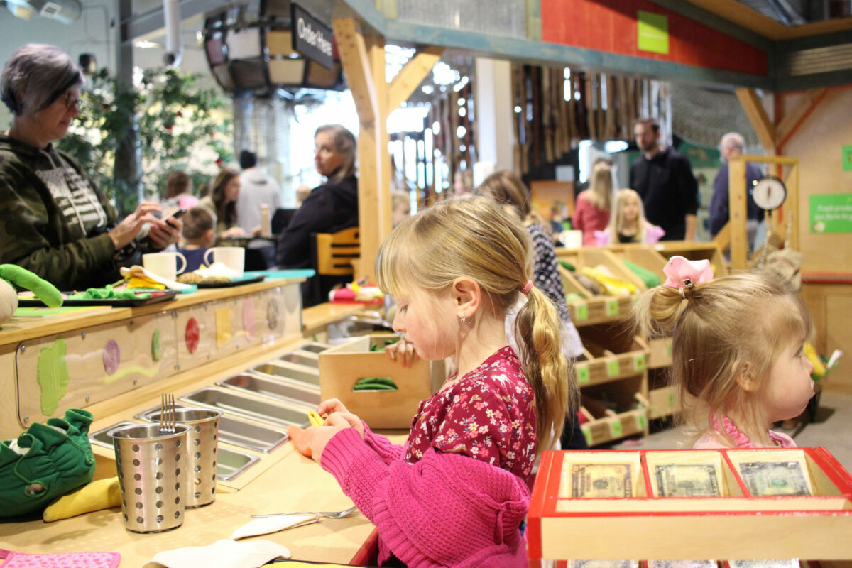 Deli-counter-in-the-Grow-it-Gallery-at-the-Childrens-Museum-of-Southern-Minnesota