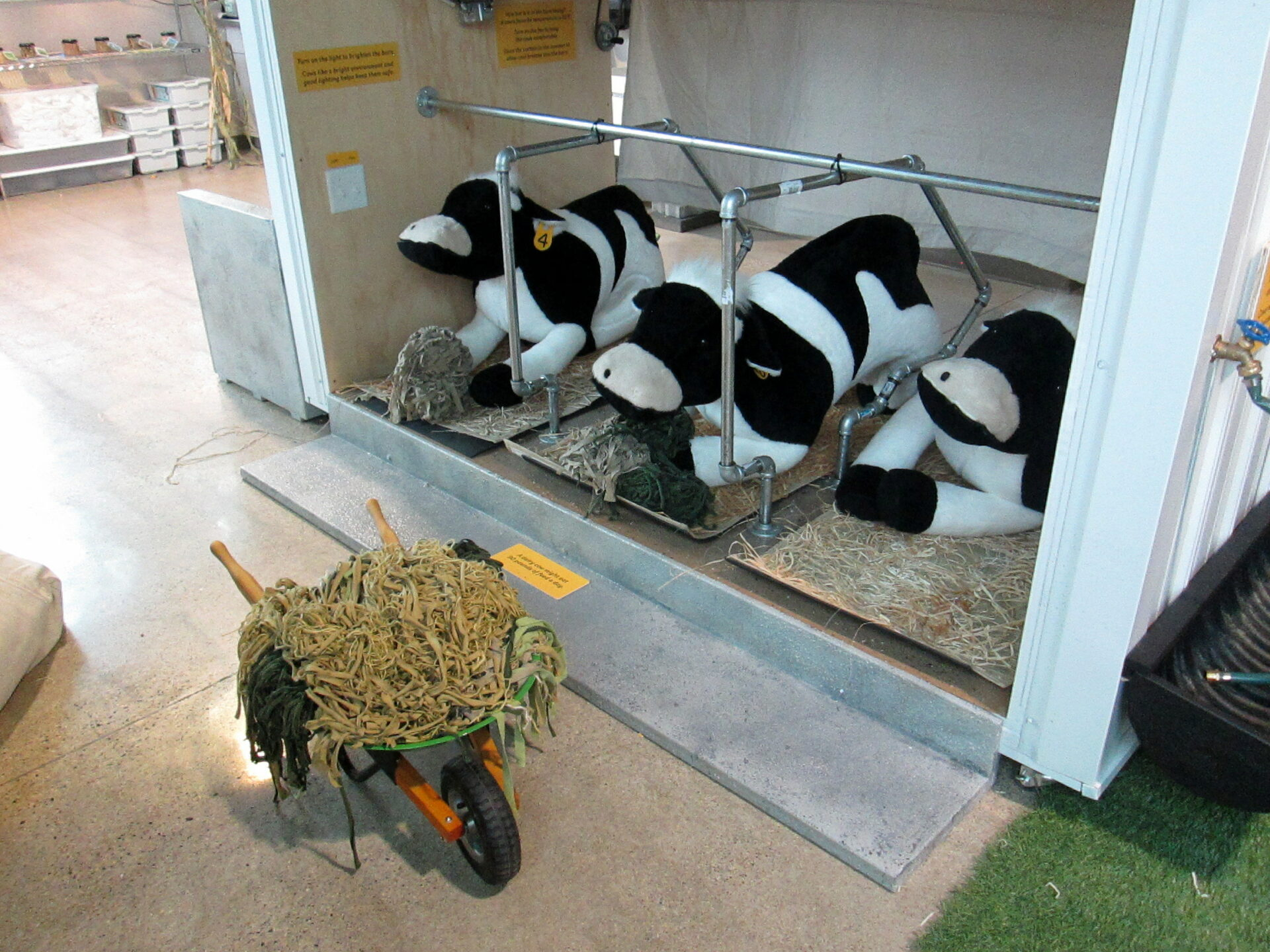 Dairy Barn Cow Care Exhibit in the Ag Lab at the Children's Museum of Southern Minnesota