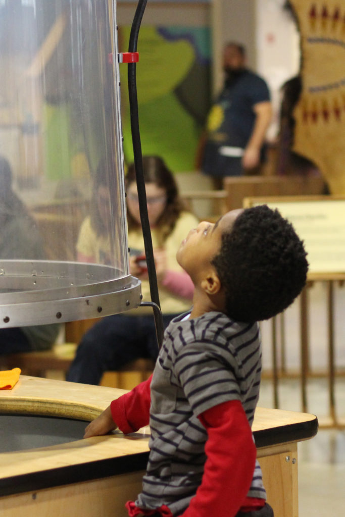 Sensory Friendly Opportunities at the Children's Museum of Southern Minnesota