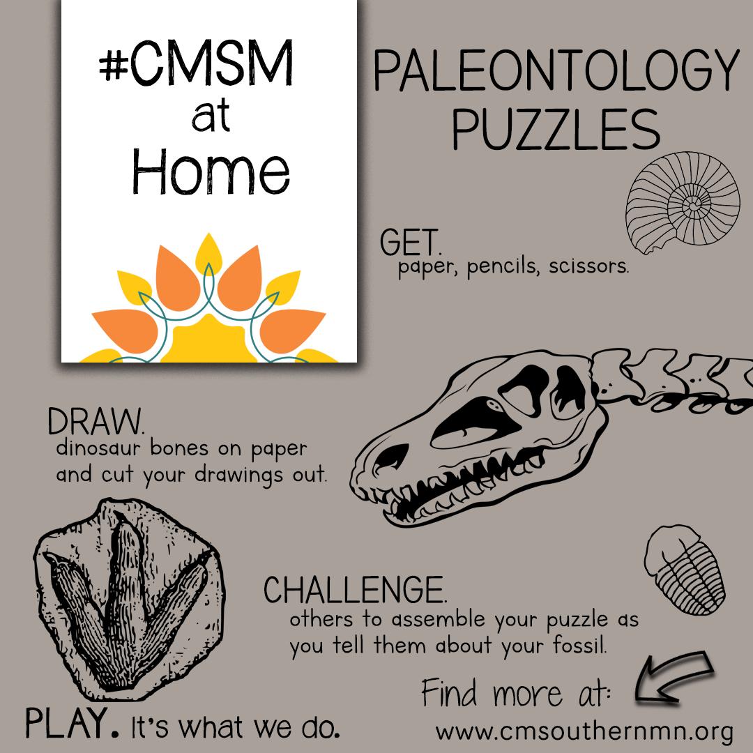 Paleontology Puzzles | CMSMatHome