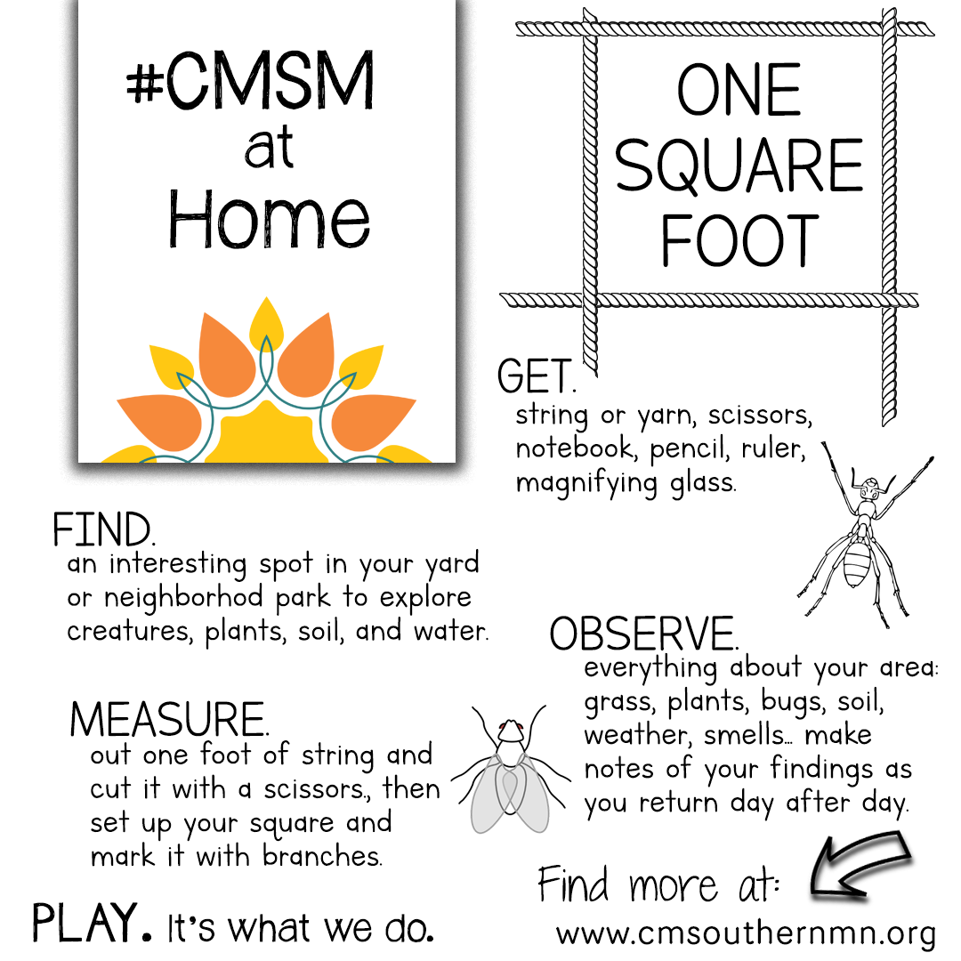 One Square Foot | CMSMatHome