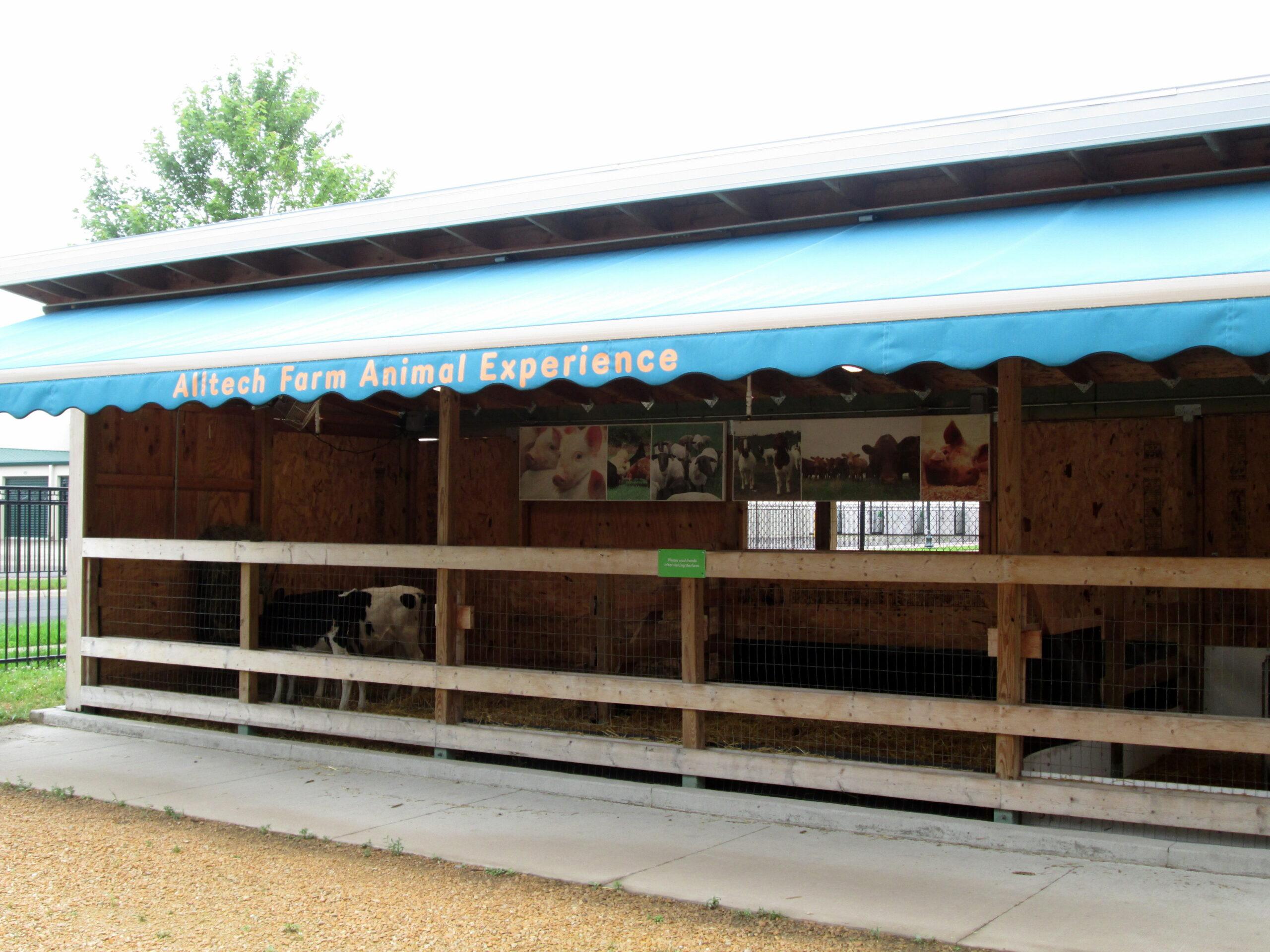 Alltech Farm Animal Experience - barn