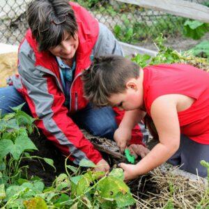 Little Farm Hands Alltech Farmyard Childrens Museum of Southern Minnesota