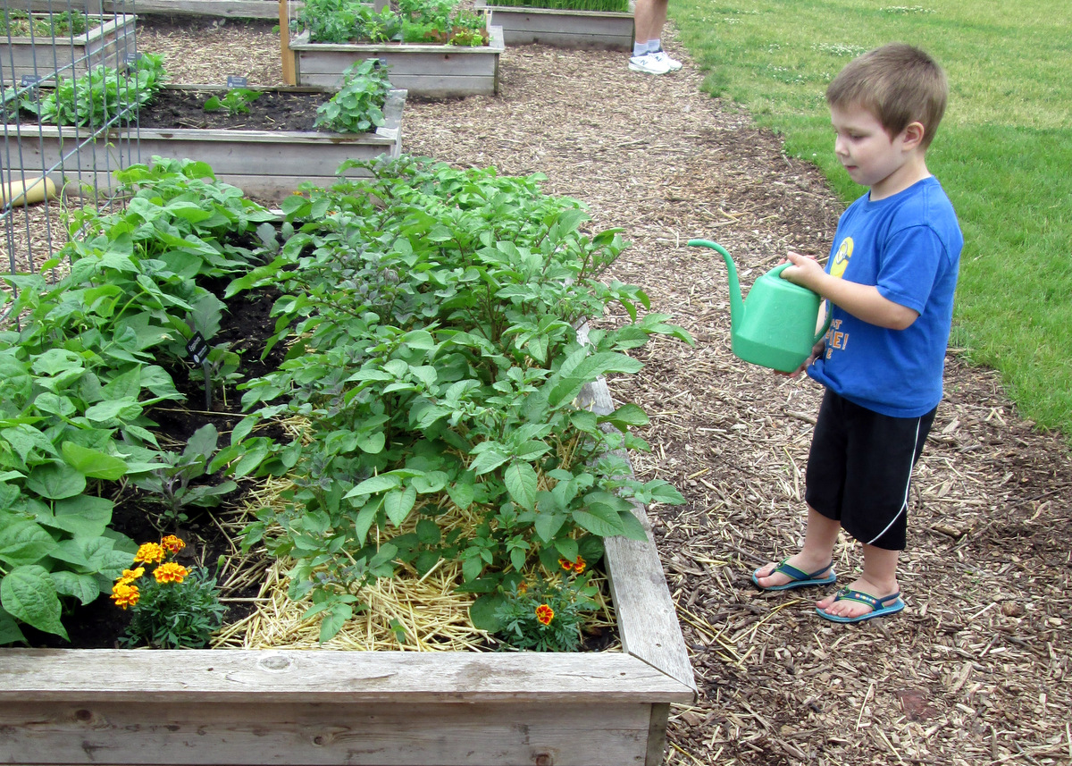 Garden Care with Little Farm Hands Program at the Children's Museum of Southern Minnesota