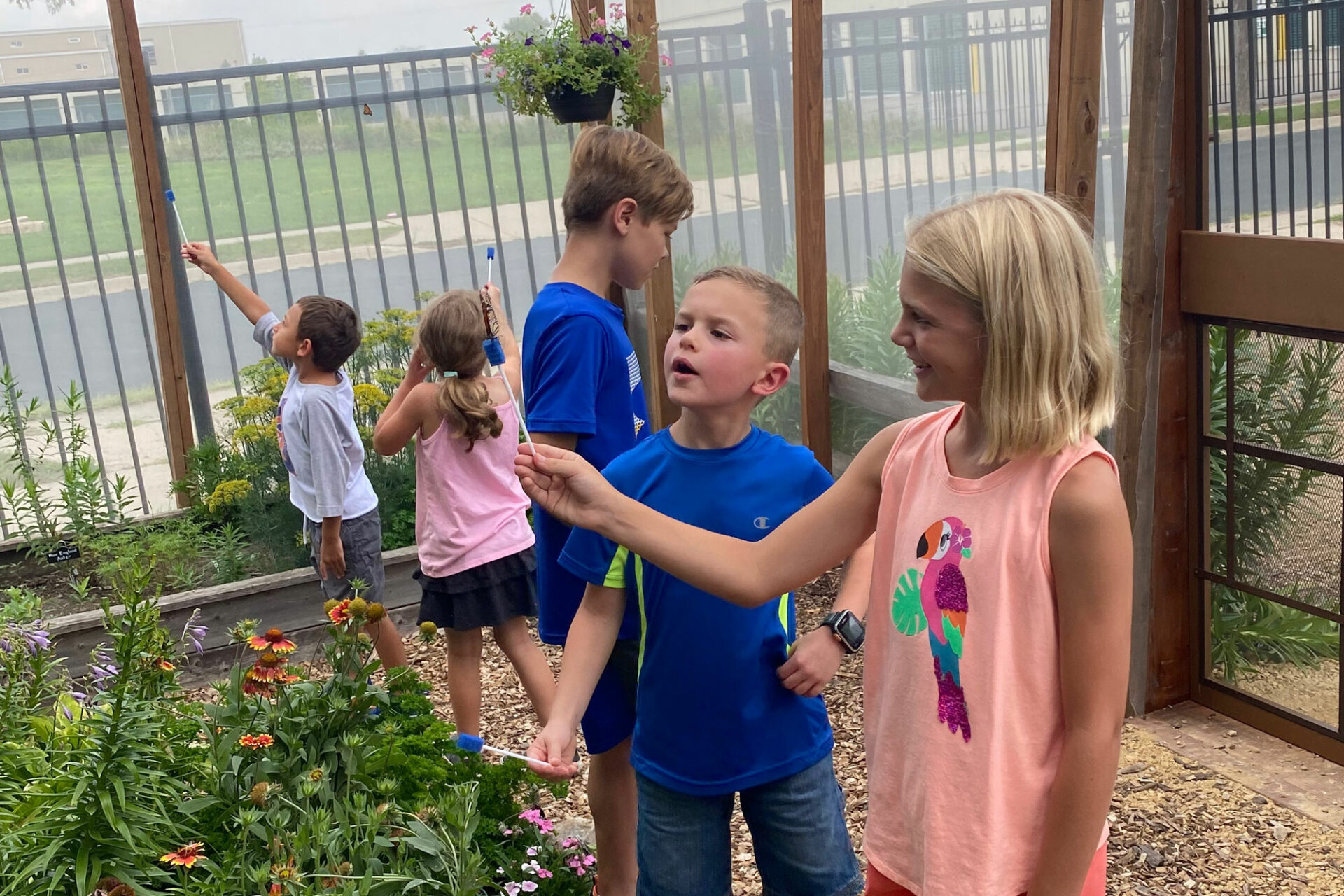 Butterfly House Monarch Pollinator exhibit at the Children's Museum of Southern Minnesota in Mankato