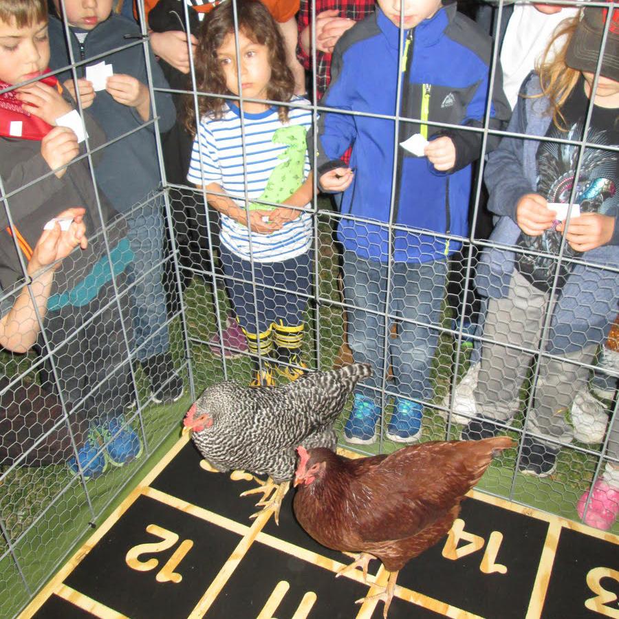 Chicken-Poop-Bingo-at-Harvest-Fest-Childrens-Museum-Southern-Minnesota-Mankato