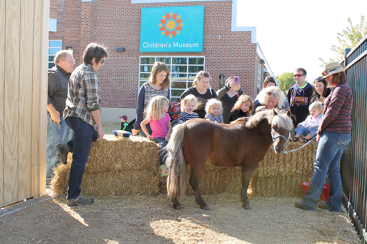Pony Pinewood Stables Harvest Fest Children's Museum Mankato.jpg